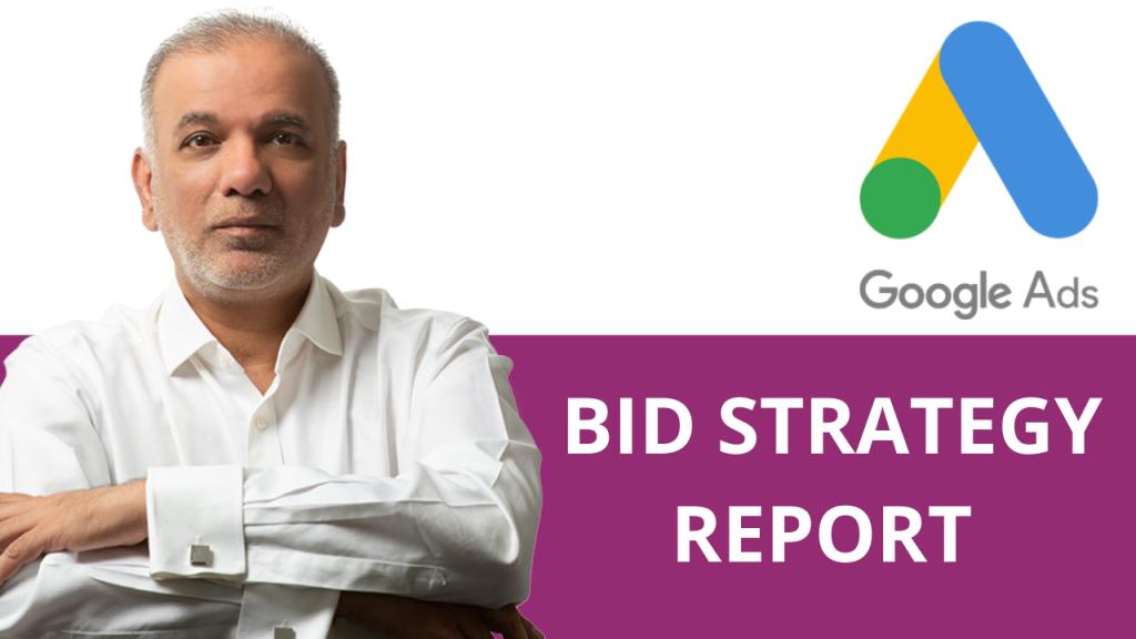 Google Ads Bid Strategy Report